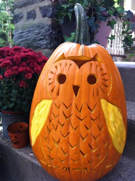 Owl Carved Halloween Pumpkin Photo Source
