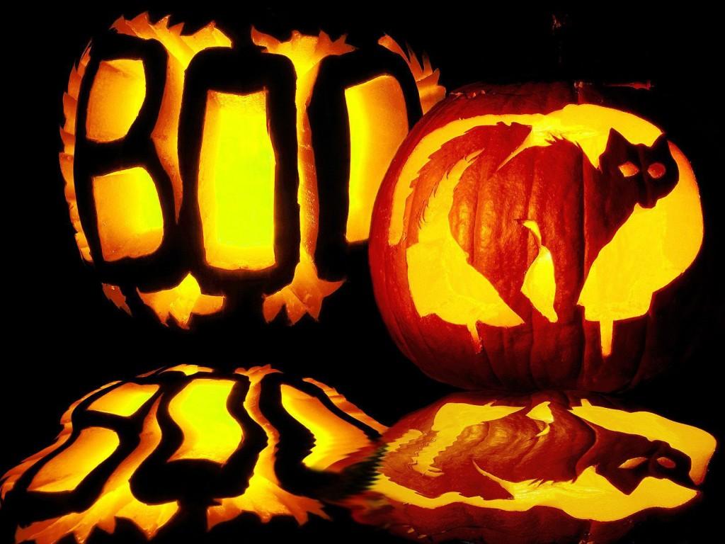 """Boo"" ""Cat"" Halloween Pumpkin Photo Source"