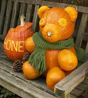 Beary Cute Pumpkin Photo Source