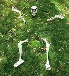 Funny Halloween decoratioins