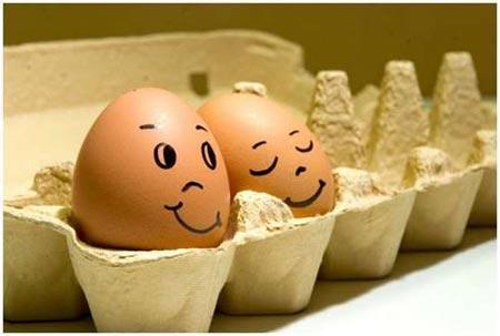 Funny Easter Egg Humor
