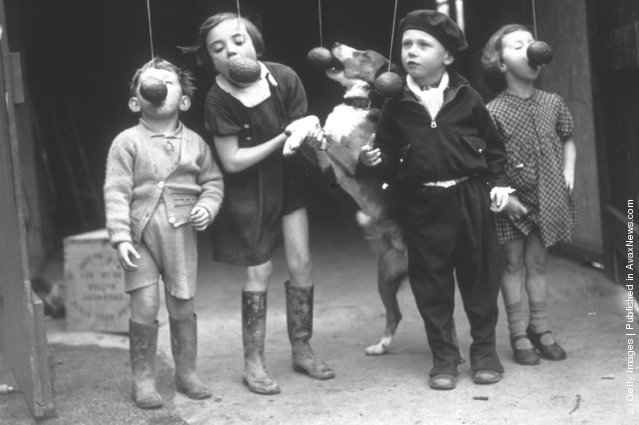 Young  children and their dog playing an Easter game in Cardiff. The game involves trying to eat an Easter egg off a piece of string without using their hands. (Photo by Richards/Fox Photos/Getty Images). 26th March 1937 Photo Source