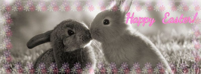 Happy Easter Facebook Banners