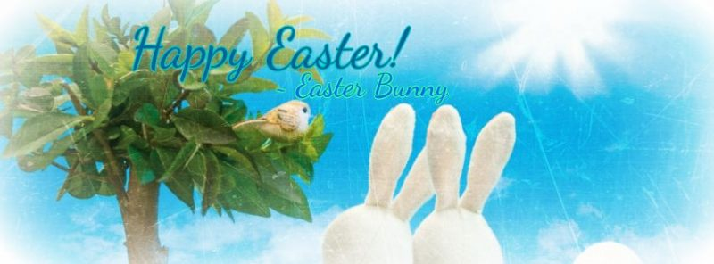 BeFunky_easter-bunny-orange-county.jpg