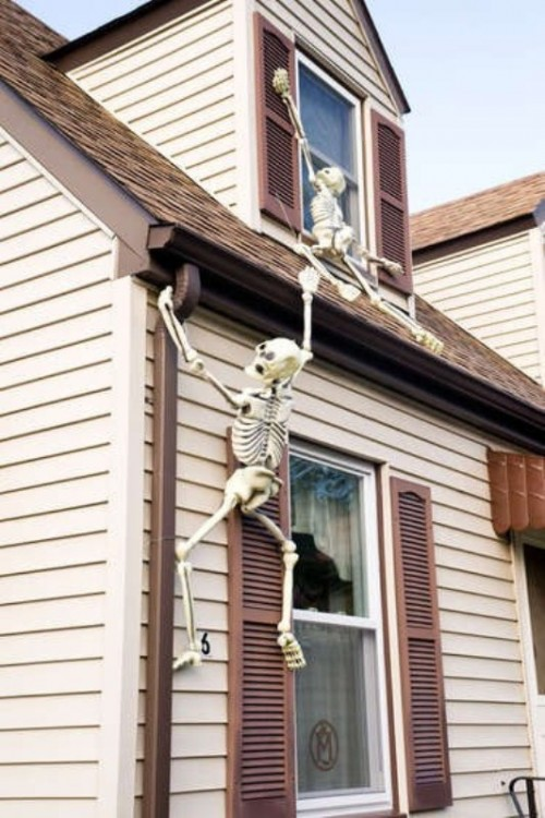 outdoors halloween decorations