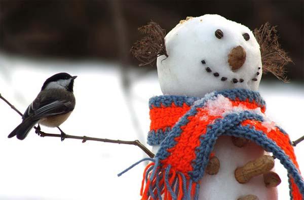 funny_snowman2