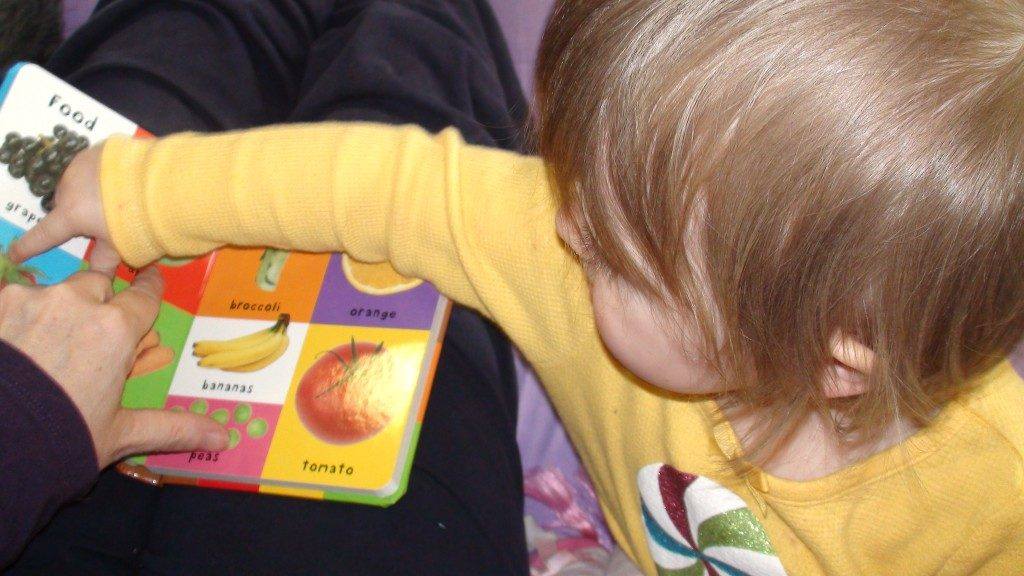 grandmas review of the book, Baby's First Words