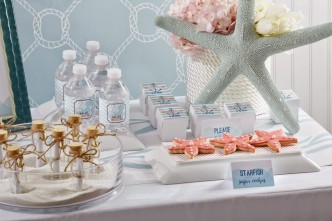 nautical baby shower for a girl