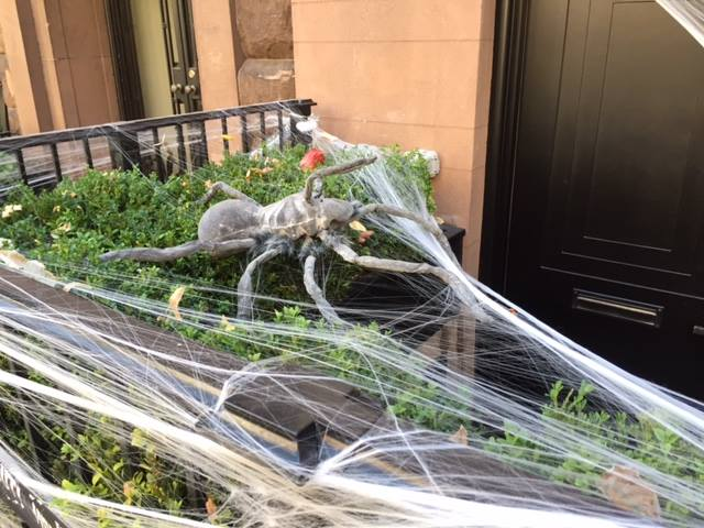 nyc-halloween-spider