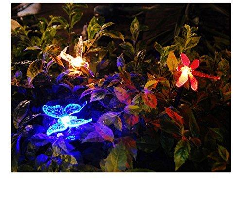 solar lights for your garden