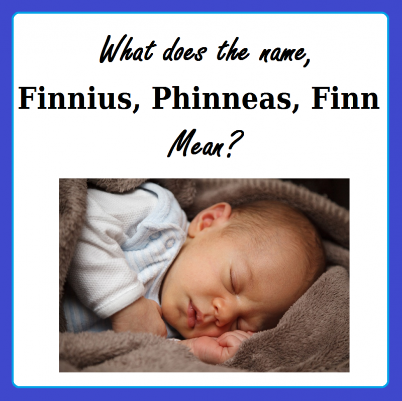 name meaning of finnius