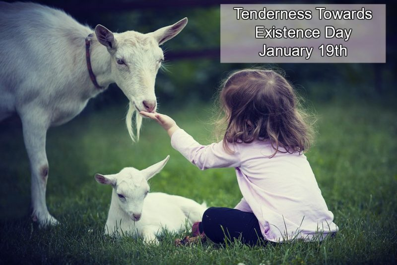tenderness towards existence day